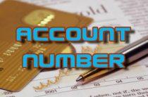 Как узнать номер своего счета в системе PayPal и другие реквизиты аккаунта